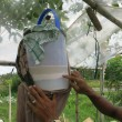 ココナッツオイル 発酵分離