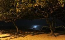 満月の夜はサヌールへ
